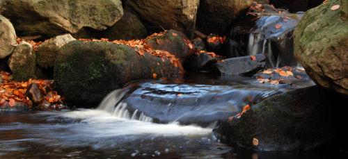 Padley Flows